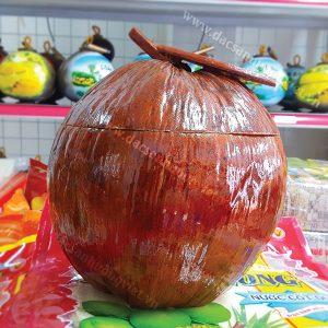 Vỏ bình giữ ấm bình trà trái dừa